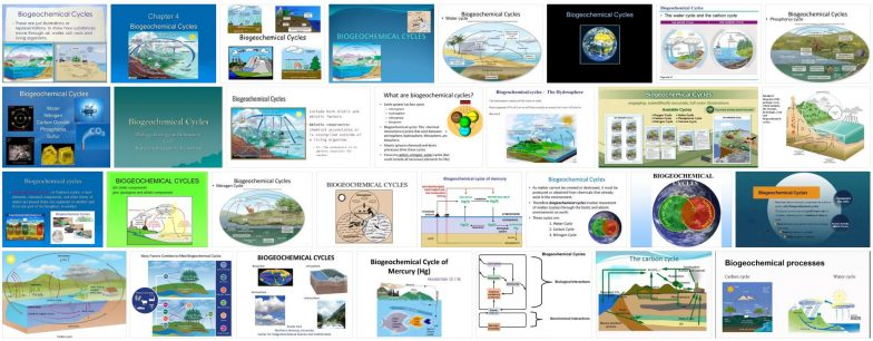 What are biogeochemical cycles